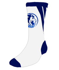 Custom sock mockup with blue lion head logo